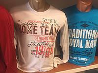 Кофта мужская, свитшот, реглан, джемпер Casual с рисунком (цвета разные)