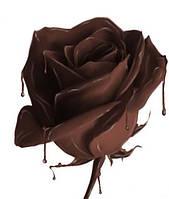 Рецепт шокомастики.Как сделать шоколадную розу.