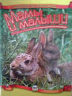 Энциклопедия для любознательных: Мамы и малыши Талант