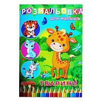 Книга раскрасок для малышей &quotЖивотные&quot, 72стр., А4, 12В-010, скоба