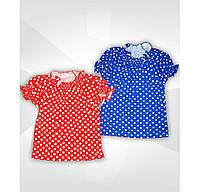 Блуза на девочку в горошек 01035_SoF