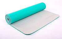 Коврик для фитнеса Yoga mat 2-х слойный мятный-серый TPE+TC 6мм  FI-5172-3