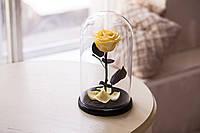 Роза в стеклянной колбе Желтый топаз