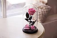 Роза в стеклянной колбе Розовый кварц