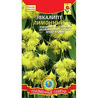 Эвкалипт лимонный 3 шт Плазменные семена