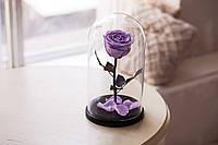 Роза в стеклянной колбе Фиолетовый аметист