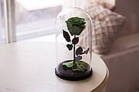 Роза в стеклянной колбе Лаймовый нефрит