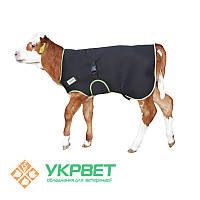 Одеяло для телят Premium
