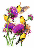 Набор для вышивки бисером Птицы в цветах, размер 28х40 см, арт. 1347