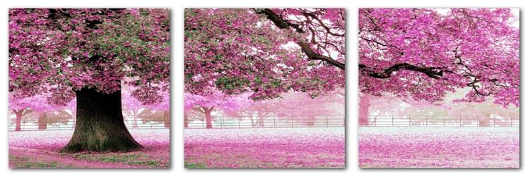 Картины по номерам 50х150 см. Триптих Весенний цвет