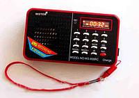 Радиоприемник FM цифровой WS-958: автопоиск частоты, USB/micro SD/AUX, аккумулятор 800 мАч, экран