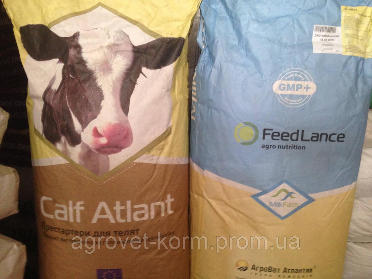 Агроветатлантiк ТМ Здорова Кау Прот Лакто добавка для дiйних коров. 25 кг