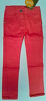 Штаны для девочек Коттон 104 см 3 года Коралловый 26309023439 ШР309 Бэмби Украина