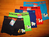 Трусики-шортики для мальчиков Aura.via оптом 2-3, 4-6, 6-8 лет.