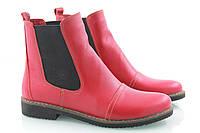 Честеры кожаные красные