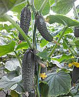 Семена огурца Оптимус F1, от 100 шт, Lark Seeds