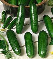 Семена огурца Стингер F1, 1000 шт, Lark Seeds