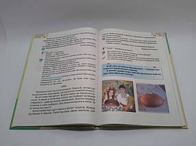 Підручник Літературне читання 2 клас Савченко Освіта, фото 2