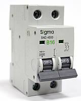 Автоматический выключатель автомат 16 А ампер двухфазный двухполюсный B В характеристика цена купить Европа