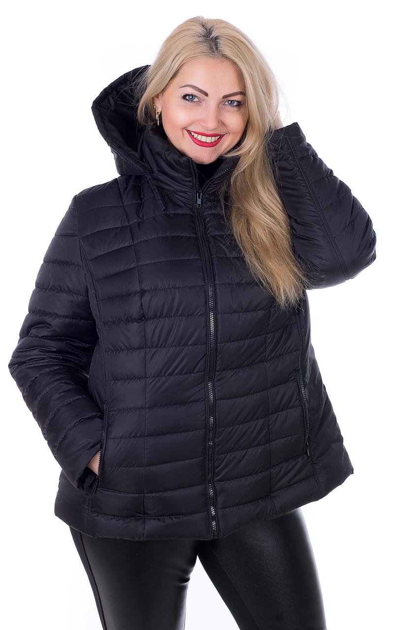 куртка для полной девушки