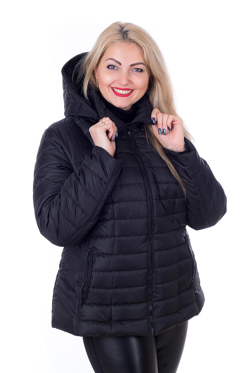 Стильная куртка большого размера Келли черный (56-66) - FaShop  Женская одежда от производителя в Харькове