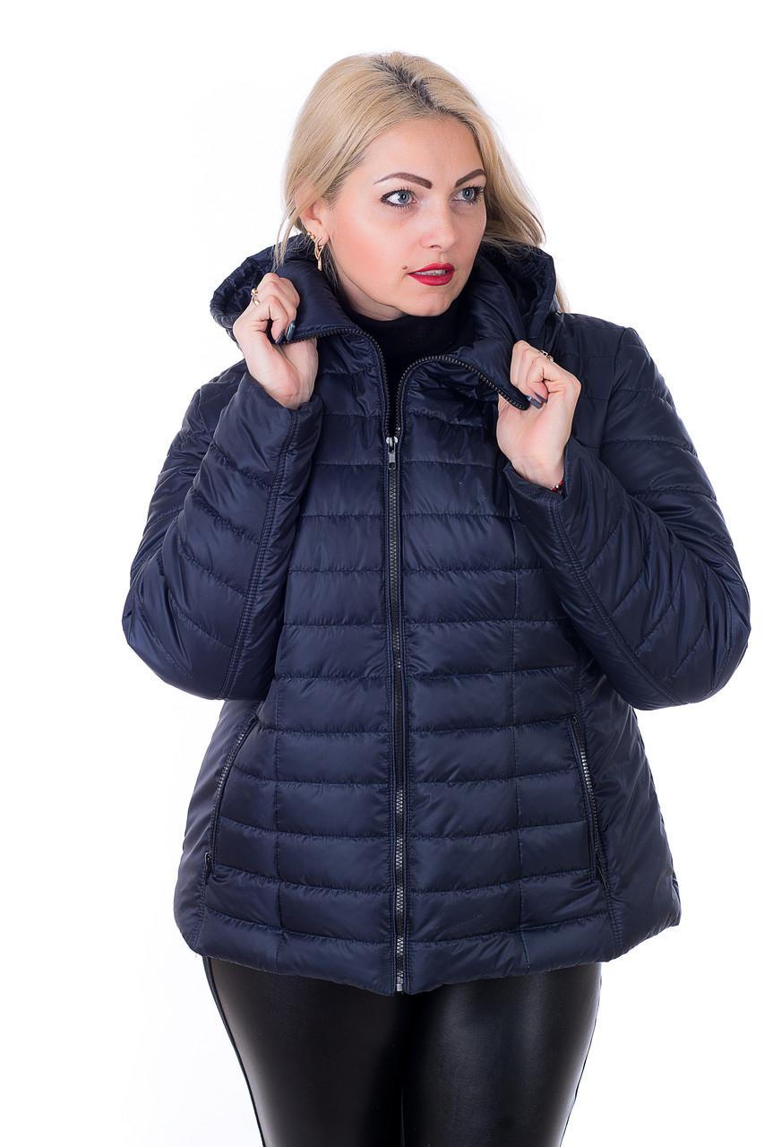 Стильная куртка большого размера Келли синий (56-66)
