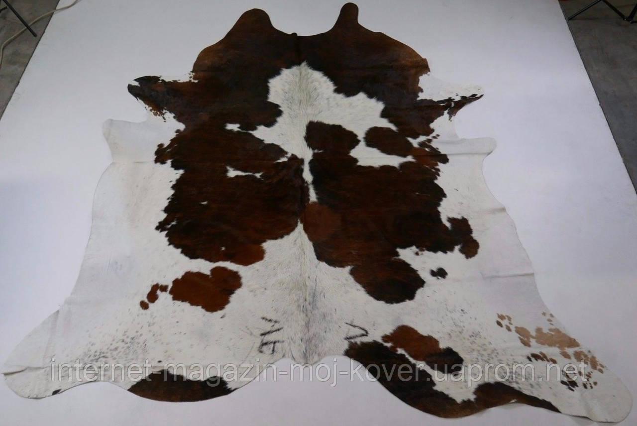 Экзотическая шкура из Бразилии белая с коричневыми пятнами среднего размера