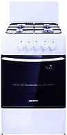 Кухонная плита Nord 100-3А (б)