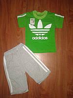 Футболка и шорты Аддик