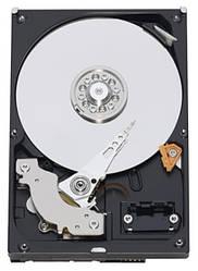 Жесткий диск Western Digital 1 TB 5400-7200 rpm 64 MB SATAIII WD10EZRX