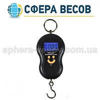 Кантер электронный WH-A (40 кг)