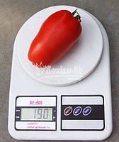 Семена томата  АЙДАР F1 250 сем  (Clause) - Всезезонный. Качество плода: 140-160 г. Перцевидная сливка.