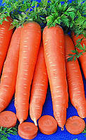 Морковь Вита Лонга 3г