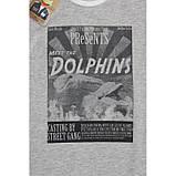 Meet The Dolphins футболка для мальчика серый меланж, фото 3