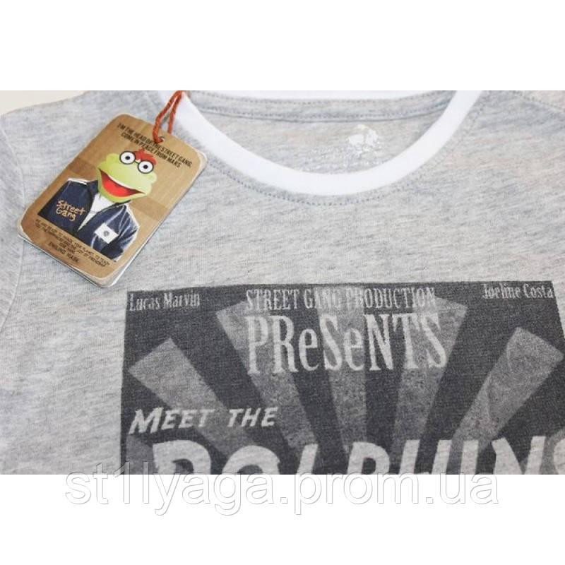 Meet The Dolphins футболка для мальчика серый меланж