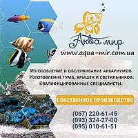 Обслуживание аквариумов Киев до 200 л