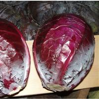 Семена капусты краснокачанной Гаранси F1. Упаковка 10 000 семян. Производитель Clause