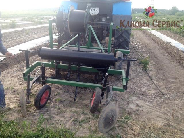 Формирование гребней для посадки малины касетными саженцами, плантация малины под пленкой