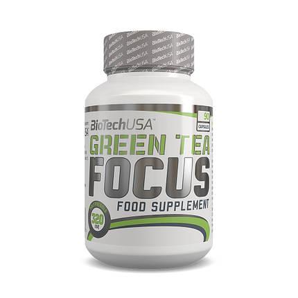 Green Tea Focus BioTech 90 caps, фото 2
