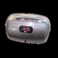 Инкубатор бытовой Лелека-кристал (ручн., без блока питания, эл.-цифр. терморегулятор Минилайн-2, вентилятор)