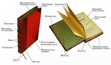 Різноманітність форматів книг у Дніпрі