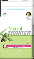 Trainer Natural Junior Maxi корм для юниоров крупных пород, 12.5 кг, фото 1