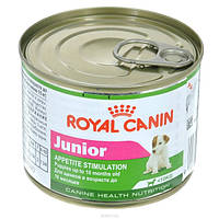 Royal Canin Junior wet/Роял Канин влажный корм для щенков мелких пород до 10-ти мес.
