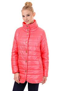 Куртка жіноча весна F108