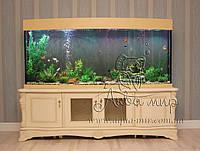 Обслуживание аквариумов в Киеве от 600 - 800 грн