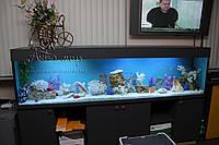 Комплексное обслуживание аквариумов от 1000 л