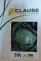 Семена капусты ранней Сир F1. Упаковка 2 500 семян. Производитель Clause