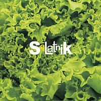 LaKava представлена в мережі закладів Salatnik
