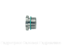 Резьбовая пробка с шестигранным углублением, Нержавеющая сталь, фото 1