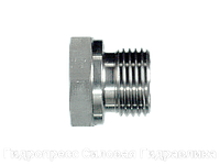 Заглушки - BSP - цилиндрическая резьба с внешним шестигранником, Нержавеющая сталь